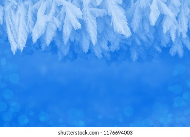 Winter background with hoarfrost frame border natural ornament.