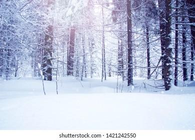 Winter-scenes Images, Stock Photos & Vectors | Shutterstock