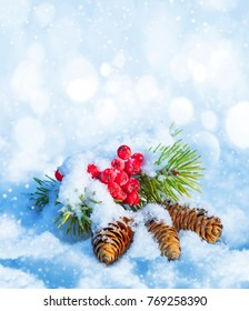 Winter background with snow-covered mountain ash and spruce branch with cones