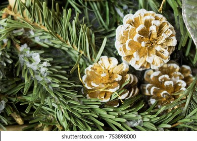 Winter background: snowy fir tree with fir-cone. Traditional  New Year and Christmas motive for greeting card. Artistic retouching.