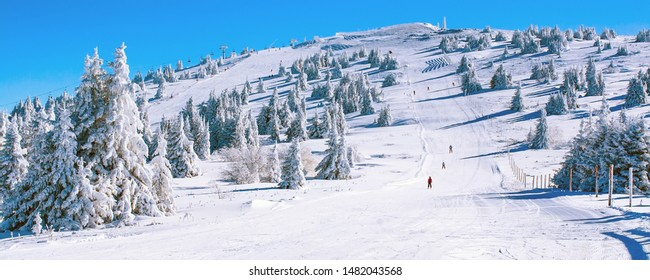 Winter banner panorama of the slope at ski resort, people skiing, snow pine trees, blue sky