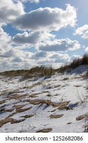 Winter beach. Snow covered sand dunes with marram grass and cloudy sky. Cold winter coastline landscape.