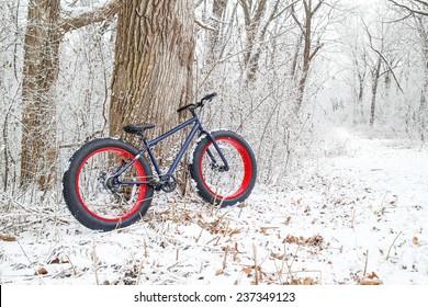 Winter biking. Fat Tire Bike.