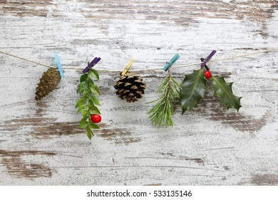 Winter branches and pine cones, hanging in a string with clothespins