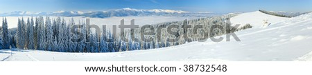 Winter calm mountain landscape with rime and snow covered spruce trees. Five shots stitch image.