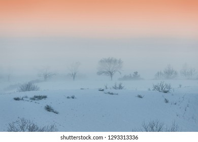 Winter in Caras-Severin - Magic foggy morning