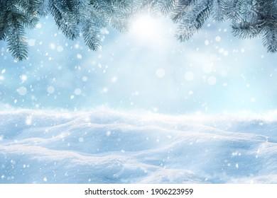 Winter card design. Beautiful fluffy snow and fir tree outdoors