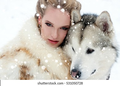 winter, christmas, animal, people, beauty concept- Young woman with wolf dog in snow over snow background