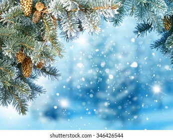 Winter Christmas background with fir tree branch and cones
