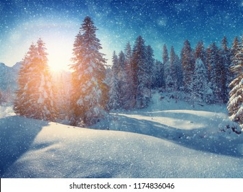 Winter christmas morning. Snowy forest on hills. Snowfall in mountains in the morning. Beautiful winter landscape. Christmas snowfall.