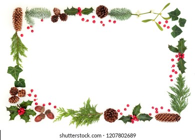 Winter and Christmas natural flora background border with holly and loose berries, leaf sprigs, acorns, mistletoe, pine cones, snow covered spruce fir on white.