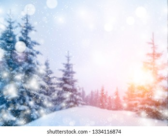 Winter Christmas scenic blurred background with falling snow and bokeh soft lights in the sunlight. Copy space for designs or illustrations available.