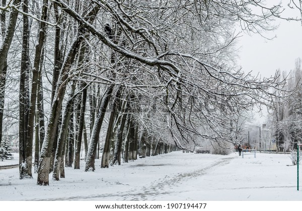 winter-city-landscape-long-row-600w-1907