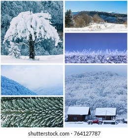 winter collage with snow-covered forests, hills, trees and macrophoto of snow and fir-tree branches (photo mine)