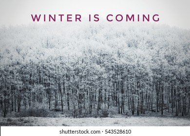 Games Of Thrones Stock Photos Images Photography Shutterstock