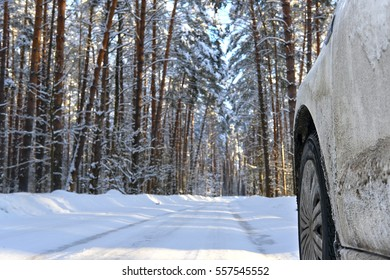 Winter country forest road and part of a car