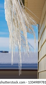 Winter Crazy Shaped Icicles