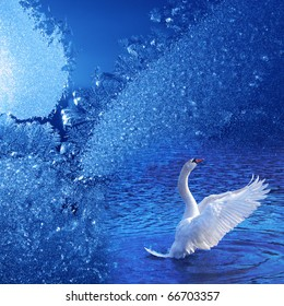 Winter dream. Blue frostwork background and swan