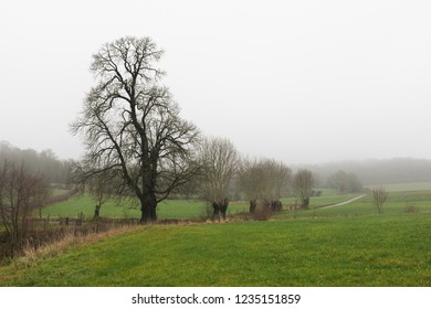Winter dutch landscape, South Limburg, The Netherlands