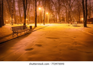 Winter evening in a central park. Benches covered in snow in a big park with trees