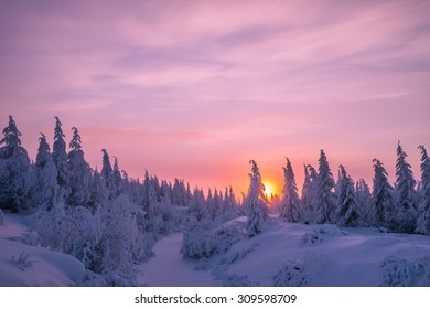 Winter Evening Landscape with pink sky and snow river and taiga