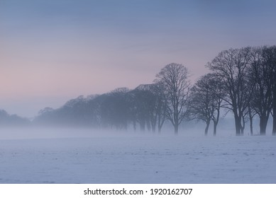 Winter evening in the north of the state of Bandenburg, Germany, with ice fog and snow. in the background country road to Rheinsberg