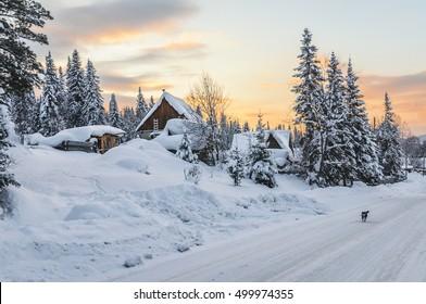 Winter evening in the Siberian village/Siberian village at sunset, Mountain Shoria, Siberia, Russia