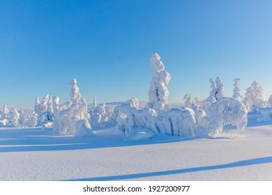 Winter fairytale in snowy Finland
