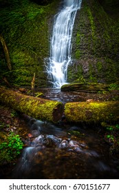 Winter Falls in Silver Falls State Park part of Oregon's stunning waterfalls