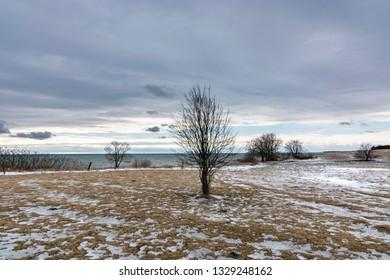 Winter Farm Field