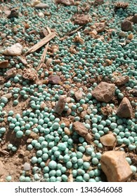 Winter fertilizer of cereals in the agricultural industry. Nitrogen, phosphorus and potassium as nutrients to strengthen the grain. Manure balls spilled accidentally on the rural road to the orchard.