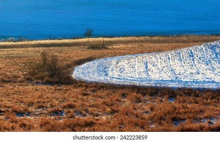 Winter Field - Shutterstock ID 242223859