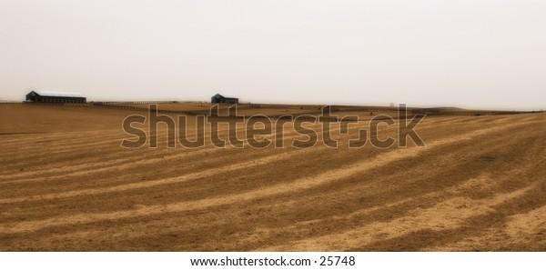A winter field awaits seed.