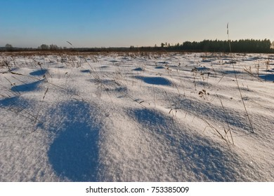 Winter field under blue sky. Nature background