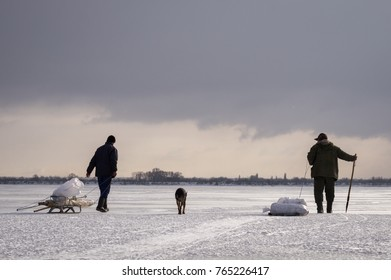 In winter, fishermen and a dog walk on ice with a catch