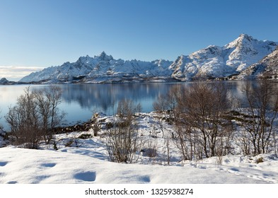 Winter fjord landscape on the Lofoten islands, Norway, Europe