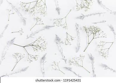Winter flowers on white background. Flat lay, top view