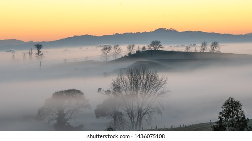 A winter, foggy sunrise over countryside in beautiful, scenic New Zealand. Landscape, Waikato, NZ