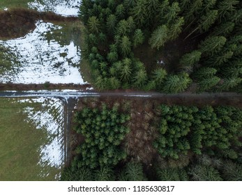 Winter forest from above, snow covers the ground and parts of the tree's branches as paths cross the photo.