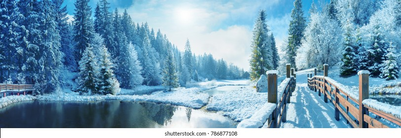 Winter forest in the Carpathians. Lake Vito. Sunny winter morning in the resort area of the Carpathian mountain lake Vito