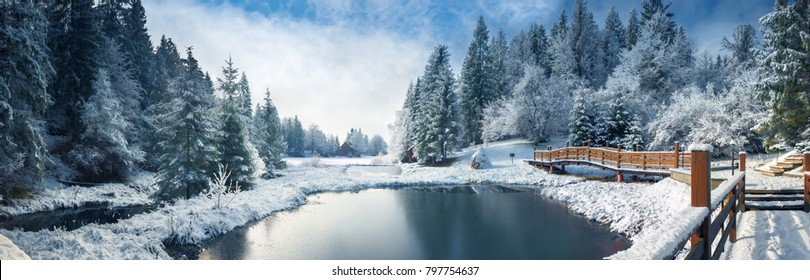 Winter forest in the Carpathians. Lake Vito