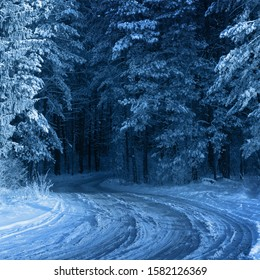 Winter forest with frost.  Color of  year 2020 Classic Blue pantone