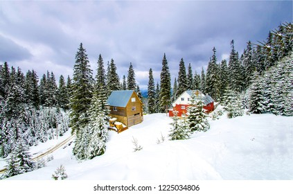Winter forest houses snow landscape. Snowy winter forest houses view. Winter snow forest houses scene. Winter forest houses snowy scene