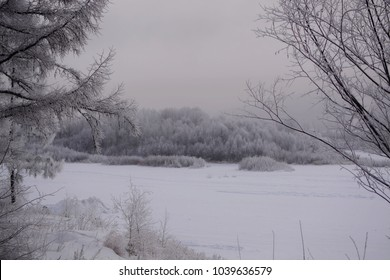 Winter forest landscape in the frost near the river.