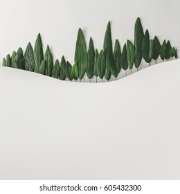 Winter forest landscape made of green leaves on bright background. Minimal nature concept. Flat lay.