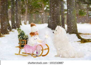 in the winter forest, a little red-haired girl in a white fur coat and pink skirt holds sparklers with her hands, and a large white Samoyed dog sits nearby