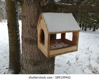 winter in the forest on a tree weighs a birdhouse for the birds