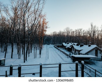 Winter forest with private village buildings in the evening lights