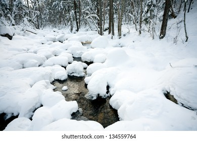 Winter forest river under the snow