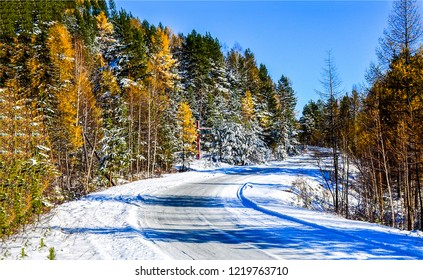 Winter forest road landscape. Winter road in winter forest. Winter snow forest road view